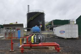 La industria argentina elaboradora de etanol maicero deja de producir ante una caída abrupta de la demanda