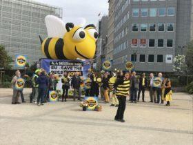 Europa decidió prohibir tres insecticidas neonicotinoides al considerar que se trata de productos perjudiciales para las abejas