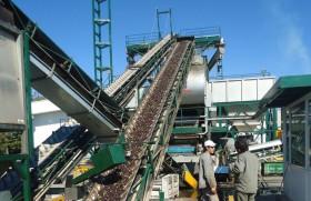 Volvieron a caer los precios de exportación del aceite de oliva por la recuperación española: expectativa por el crecimiento del consumo chino