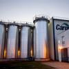 Con la eliminación de las retenciones al girasol los europeos ahora tienen vía libre para ejercer competencia desleal contra la agroindustria argentina