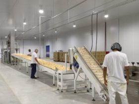 Vicentín y Adecoagro podrán importar tecnología libre de aranceles por 1,85 millones de dólares