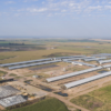 Gigante: el megatambo estabulado de Adecoagro ya tiene más de 11.000 vacas en ordeñe