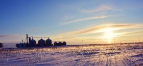 Con una ayudita del gobierno todo es más fácil: volvieron a incrementarse los subsidios agropecuarios en EE.UU