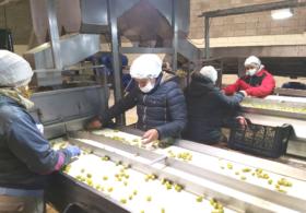 Empresas privadas con capital estatal: una provincia argentina implementó el modelo chino de desarrollo económico