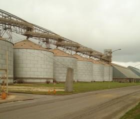 """En más del 90% del período comercial de la soja argentina 2019/20 la demanda tuvo que ofrecer """"premios"""" importantes para poder originar mercadería"""