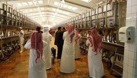 Posicionamiento estratégico: la corporación saudí Almarai ya produce 30.000 hectáreas en la Argentina