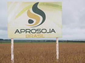 El Instituto Nacional de Propiedad Industrial de Brasil reconoció la nulidad de la patente de la soja Intacta de Monsanto