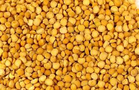 Argentina se consolida como exportador de arveja amarilla con precios muy competitivos respecto de la variedad verde