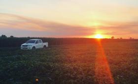 El ingreso neto de divisas generado por la agroindustria superó los 4000 M/u$s en el primer bimestre: porqué la industria automotriz debería dar la gracias