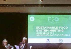 Sistema alimentario sostenible: qué dice el documento que referentes agroindustriales presentarán a los líderes mundiales en el G20