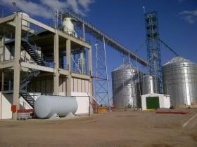 El gobierno evalúa elevar el corte de etanol con nafta al 10% para doble propósito: desarrollar el polo maicero y aliviar la crisis azucarera