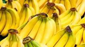 Corredor Bioceánico: buscan alternativas logísticas para evitar que las bananas se transformen en un artículo de lujo