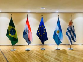 """El acuerdo UE-Mercosur permitirá a los europeos """"mantener un producto fuera del mercado aun en el caso de que el análisis científico no sea concluyente"""""""