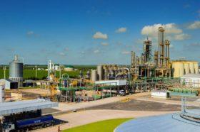 Valor desagregado en origen: colapsó la industria argentina de bioetanol maicero al registrar quebrantos insostenibles