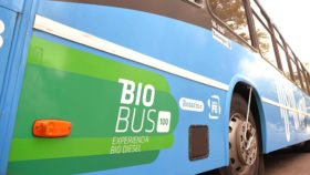 Vaca Muerta está muerta: Argentina del Centro necesita una política bioenergética
