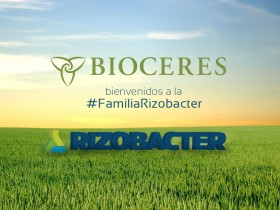 La causa detrás de la venta a Bioceres: en el último ejercicio Rizobacter perdió 96 millones de pesos