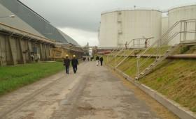 Primarización: la exportación de poroto de soja sin procesar tiene una capacidad de pago 10 u$s/tonelada superior a la de la industria