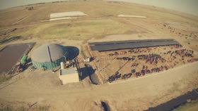 Las Bolsas de Cereales y Comercio de todas regiones productivas se propusieron crear un mercado argentino de bonos de carbono