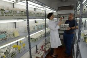 Llegó la reglamentación de la Ley de Promoción de la Biotecnología luego de más de una década de espera