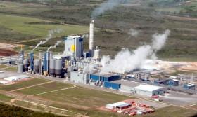 Uruguay logró independizar su matriz exportadora del factor climático: carne vacuna y celulosa lideran el ranking de generación de divisas