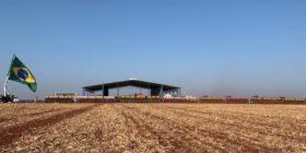 Dos países: brasileños ya vendieron más de la mitad de la cosecha de soja 2020/21 mientras que argentinos retienen el poroto