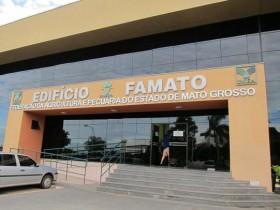 Efecto Mato Grosso: Monsanto suspendió el cobro de regalías por soja tolerante a glifosato en todo el territorio brasileño