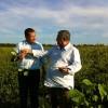 Los productores brasileños ya vendieron casi la mitad de la cosecha esperada de soja 2012/13 (los argentinos casi nada)