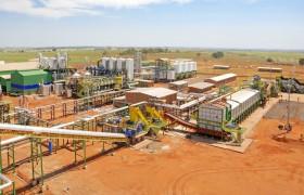 Brasil: industrias aceiteras advierten que no recibirán soja Intacta si no llegan a un acuerdo razonable con Monsanto por el costo del servicio de análisis