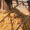 Gracias a Vietnam el precio del DDGS argentino subió 35% en el último año en un contexto desfavorable para el maíz