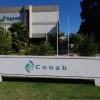 """Brasil inicia un proceso de reestructuración de la Conab: """"Es necesario sacar esa grasa de la compañía para fortalecerla"""""""