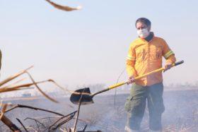 """El Ministerio de Ambiente asegura que """"con el desplazamiento de la ganadería el problema de los incendios en el Delta se agravó y se volvió masivo y recurrente"""""""