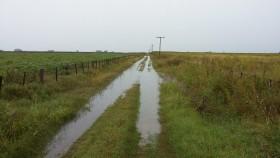 Otra vez abril: se complica la cosecha gruesa con perspectivas de lluvias torrenciales en zonas anegadas