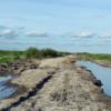 La ganadería argentina en el País de las Maravillas: cómo disfrazar la realidad con ficción