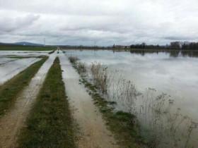 Alerta caminos rurales: se vienen dos días de precipitaciones intensas en el norte de la zona pampeana