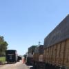 Argentina logró recuperar el ritmo habitual de la logística granaria luego de destrabar la mayor parte de las restricciones para circular