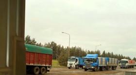 Alerta logística: durante la cosecha de trigo se prevé un aluvión de camiones cargados con el cereal hacia las terminales portuarias santafesinas
