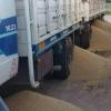 Conflictos en las rutas: corredores de granos pidieron al gobierno que garantice la libre circulación de camiones