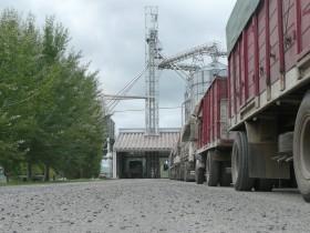 Establecieron un cupo máximo de 1000 M/$ para el subsidio destinado a productores sojeros del norte del país