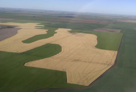 Los campos ya no tienen que ser cuadrados: la agricultura moderna se basa en el respeto del diseño original de la naturaleza