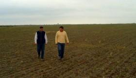 La súper emisión de pesos es principal factor de riesgo del negocio agrícola: la siembra en campo arrendado va camino a ser inviable