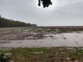 Mañana se cortan las súper lluvias en la zona pampeana: pero regresan el domingo
