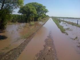 Los precios locales de la soja registraron el nivel más alto del año gracias al estado desastroso de los caminos rurales