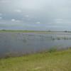 Alerta por tormentas intensas con abundante caída de agua en zonas productivas con excesos hídricos