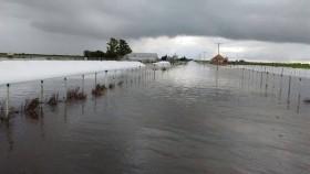Desastre climático: se esperan más lluvias torrenciales en las zonas productivas afectadas por excesos hídricos