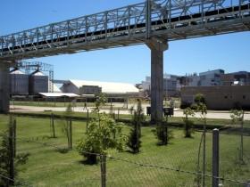 Sigue la guerra fría entre los exportadores y el gobierno: renuevan habilitación portuaria a Cargill por apenas 30 días