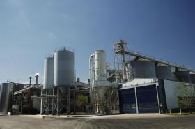 Otra vez: los precios de la cebada forrajera son más convenientes que los determinados por contratos para maltería