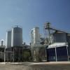 Negocio redondo: el precio de exportación de la malta subió 40 u$s/tonelada con una cebada mucho más barata