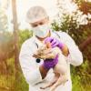 MRSA: en lo que va del año ingresaron 482.000 kilogramos de carne porcina danesa a pesar del riesgo sanitario