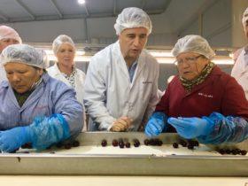 En lo que va del año Chile exportó frutas por 5100 millones de dólares: cinco veces más que la Argentina