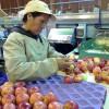 Gente con suerte: en lo que va del año Chile exportó nueve veces más manzanas que la Argentina